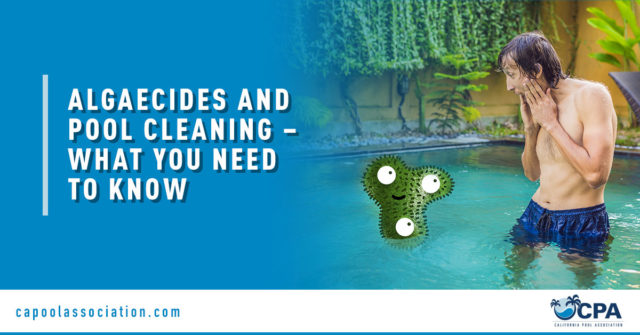 Male Shocked to Algae on Pool - Banner Image for Algaecides and Pool Cleaning – What You Need to Know Blog