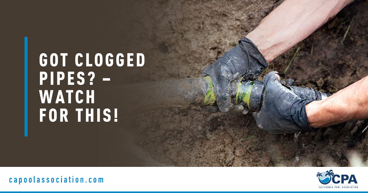 Pool Worker Holding Pool Pipe - Banner Image for Got Clogged Pipes – Watch for This! Blog