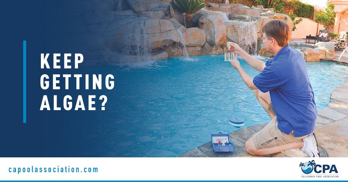 Pool Service Professional Holding Testing Kit - Banner Image for Keep Getting Algae Blog